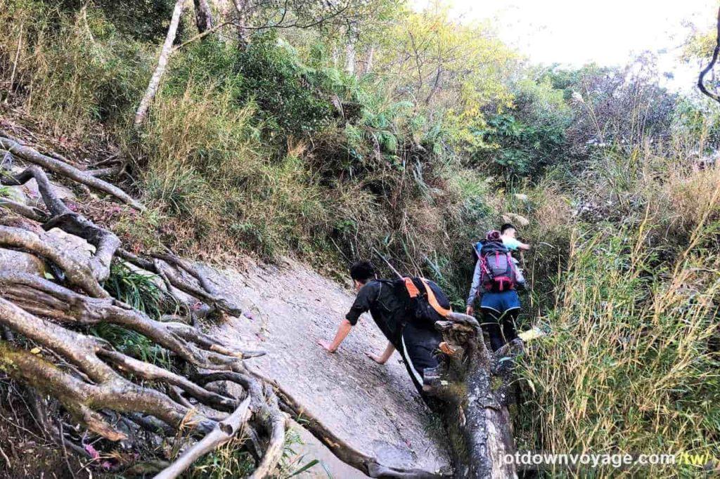 百岳#34 加里山|登山步道紀錄|遊記|推薦.台灣秋冬一日遊登山路線
