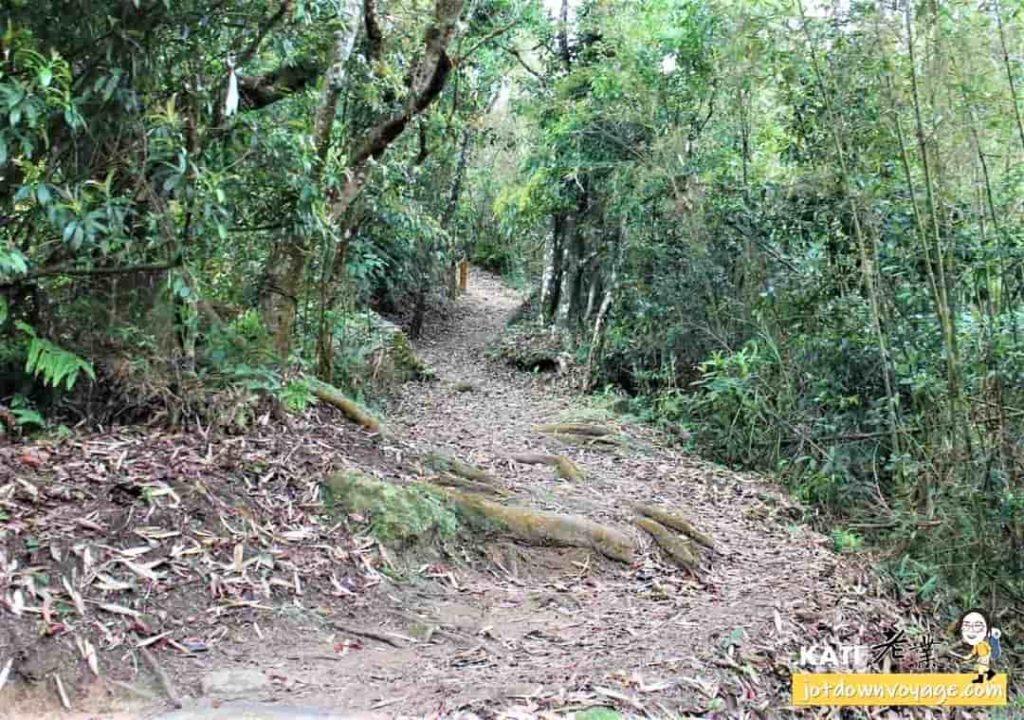 馬那邦山、馬拉邦山登山步道