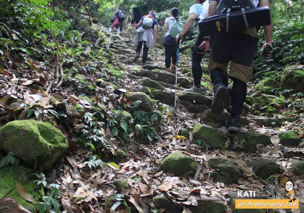 馬那邦山登山步道-石階