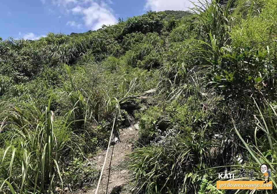 烏岩角-新登山口路線拉繩
