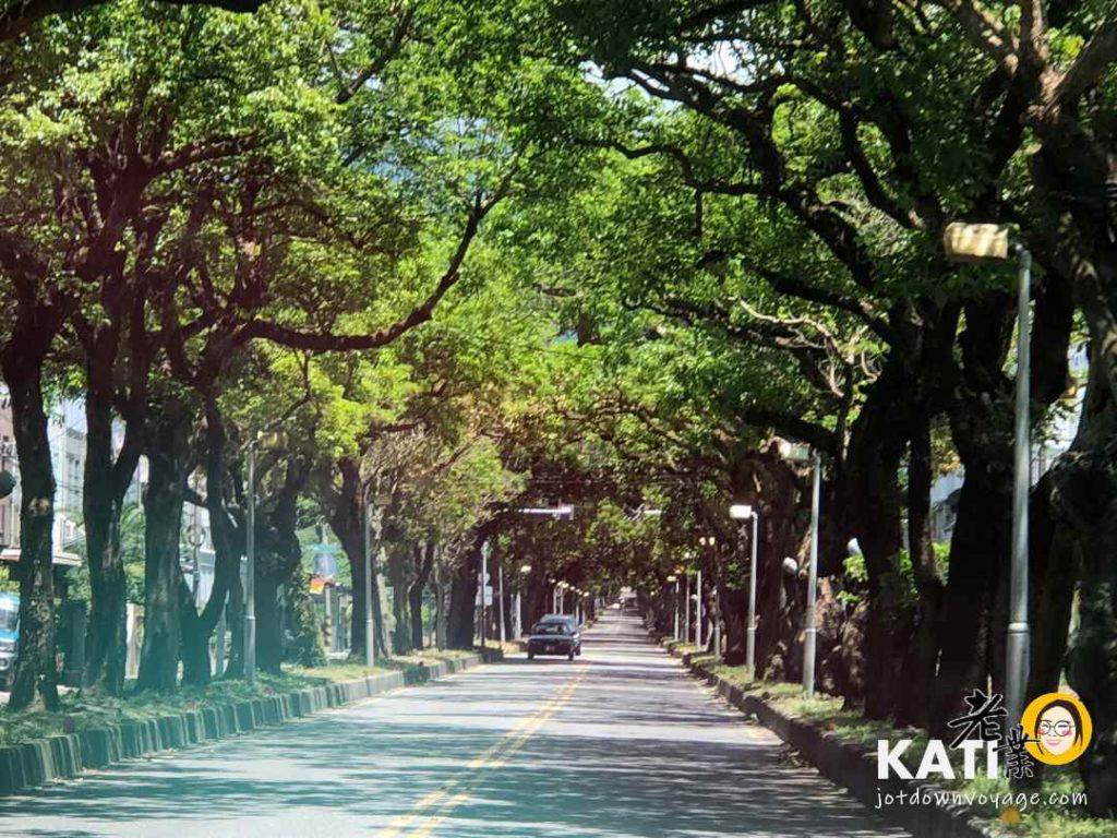 龍田綠色隧道 鹿野高台附近景點