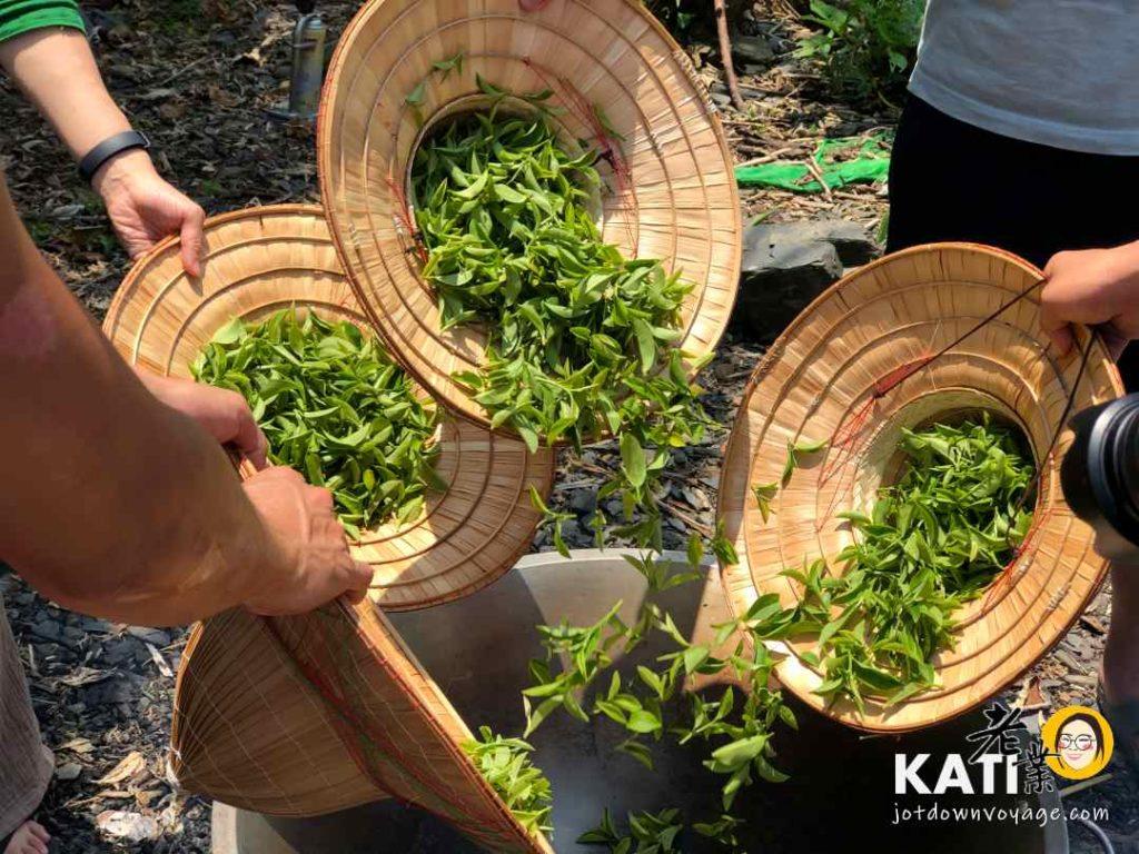 台灣旅行推薦:宜蘭採茶工藝參訪、手工炒茶體驗