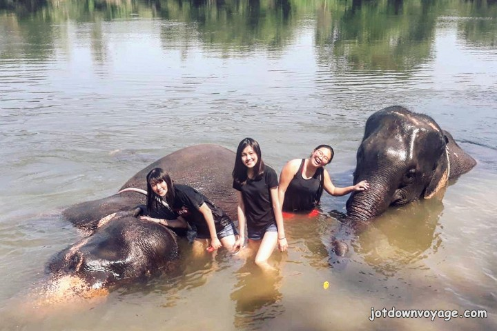2019 泰國遊記:Kanchanaburi 北碧府一日遊、大象洗澡
