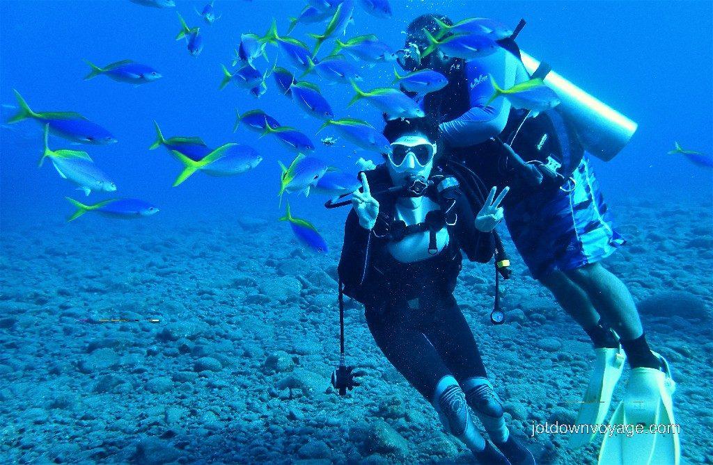 綠島氧氣瓶潛水、蘭嶼潛水